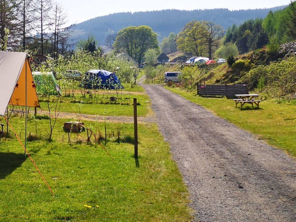 Willow Springs Campsite
